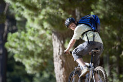 Man, with rucksack and cycling helmet, mountain biking on woodland trail, smiling, rear view Royalty Free Stock Photography
