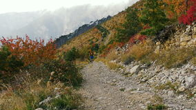 Man runner running a mountain marathon. In background of autumn forest, mountains and clouds stock video