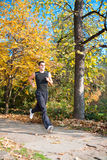 Man running in a beautiful autumn park Stock Photos