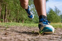 The man running close up legs and feet. Asian Man running on forest path during sunset, close up legs and feet royalty free stock photo