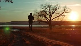 Man running down the road at sunset standing alone tree silhouette. Athletic young man running in the nature in Pine the. Man running down the road at sunset stock video