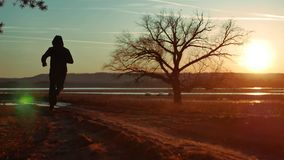 Man running down the road at sunset standing alone tree silhouette. Athletic young man running in the nature in Pine the. Man running down the road at sunset stock footage