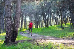 Man running fast in the forest, free space for your text. Active lifestyles, morning run Stock Image