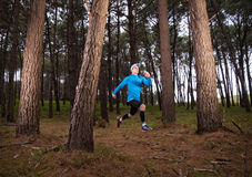 Man running in the forest Royalty Free Stock Image