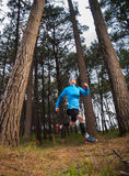 Man running in the forest Stock Image