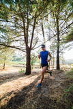 Man running in a forest outdoors Royalty Free Stock Image