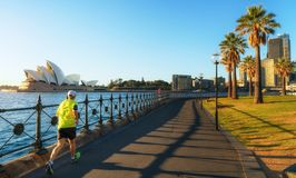 A man running in harbour park royalty free stock photography