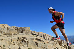Man running on a high mountain trail Stock Photography