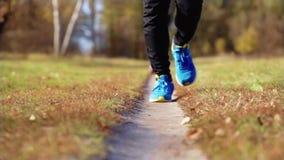 Man running on the meadow path. Athlete man running on the meadow path stock video footage
