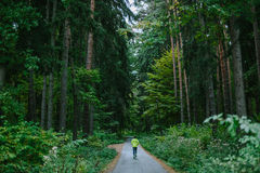Man running on path in old green forest. Man running and exercising for trail run on a path in old green forest Stock Photography