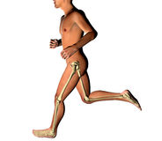 Man running skeleton x-ray Stock Photos