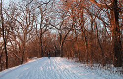 Man running through the snow-covered park at sunset Stock Photos