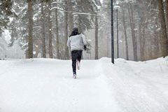 Man running on snow covered winter road in forest Royalty Free Stock Image