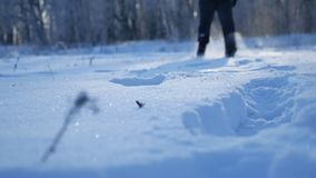 Man running in the snow legs in shoes field and forest beautiful landscape winter nature stock footage