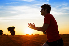 Man running on summer sunset Royalty Free Stock Photography