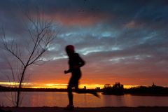 Man running at sunset on lake Stock Images