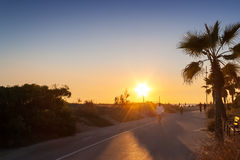 Man running on the sunset. Next to the beach and palms Stock Photography