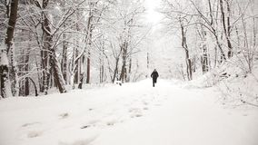 Man running during a winter day. Man exercising in the park during a winter day stock footage