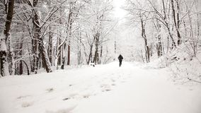 Man running during a winter day. Man exercising in the park during a winter day stock video