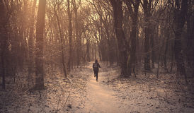 Man running in the winter forest Stock Image