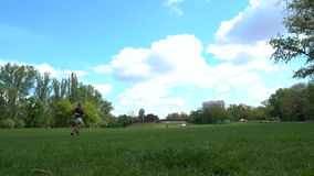 A man runs around the park with his dogs stock video footage