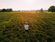 A man runs in the countryside at sunset. Back view, young caucasian male, white t-shirt. Summer season Royalty Free Stock Photo