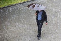 Rainy weather umbrella Stock Photography