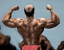Man's back double biceps pose. royalty free stock images