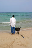 Man's Best Friend. A boy and his dog reflecting life at the beach stock images
