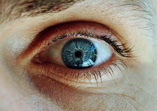 Man's blue eye. Close up Stock Image