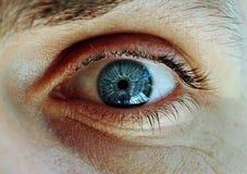 Man's blue eye. Close up stock image