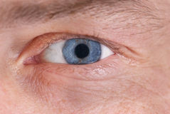 Man's blue eye Stock Image
