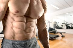 Man with great abs Royalty Free Stock Image