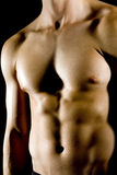 Man's chest Royalty Free Stock Image