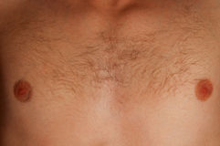 Man's chest Royalty Free Stock Images