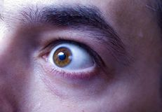 Man's Eye. Aa eye of a man with eyebrow royalty free stock photography