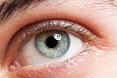 Man's eye Stock Images