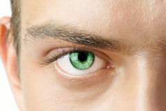 Man's eye. Macro shot of man's green eye with visible blood vessels Royalty Free Stock Photos