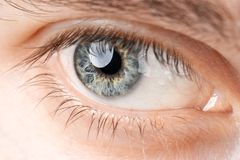 Eyes close-up. Man`s eye open close-up, man royalty free stock photography