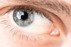 Eyes close-up. Man`s eye open close-up, man royalty free stock images
