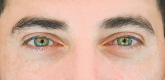 Man's eyes. Close up shot of the man's eyes Royalty Free Stock Images