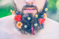 Man's face with a beard with flowers in his beard close-up on green natural background, toned Stock Image