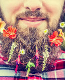 Man's face a long beard and flowers in his beard close up Stock Images
