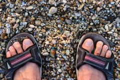 Man`s Feet in Sandals Standing On The Rocky Beach.  Stock Images
