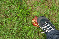 Man's foot crushing a red apple Royalty Free Stock Image