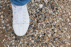 Man`s foot in sneakers on the sand. Male foot in sneakers on the sand among the many shells Stock Photos
