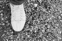 Man`s foot in sneakers on the sand. Male foot in sneakers on the sand among the many shells Stock Photo