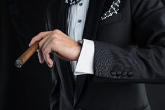 Man's hand with a cigar Royalty Free Stock Photo