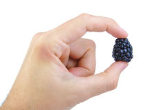 Man's hand holding a blackberry on white Royalty Free Stock Images