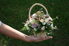 Man's hand holding bouquet. Of flowers royalty free stock image